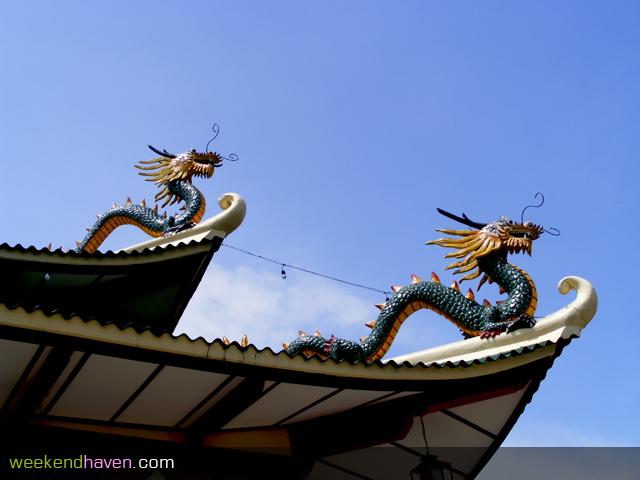 kineski zmaj 9